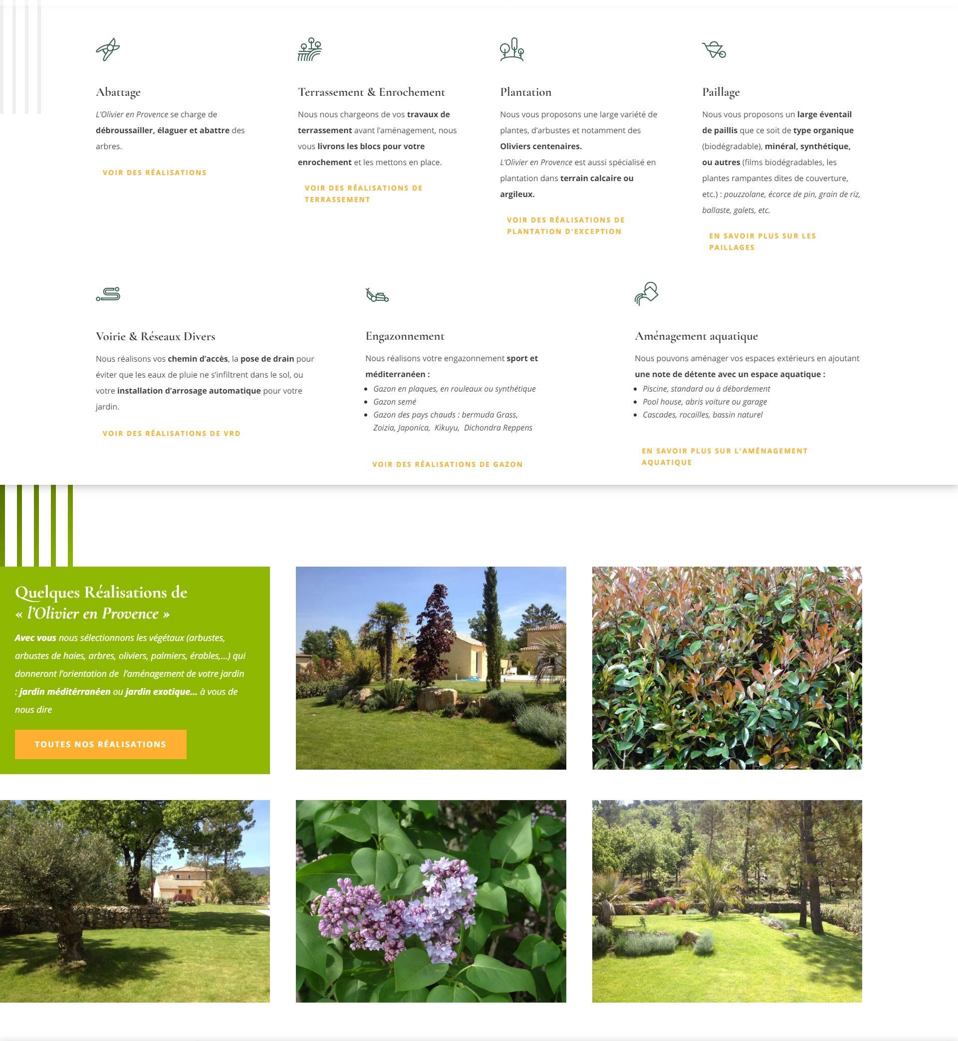 Stratégie marketing pour l'olivier en provence